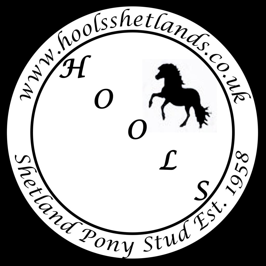 Hools Shetland Pony Stud