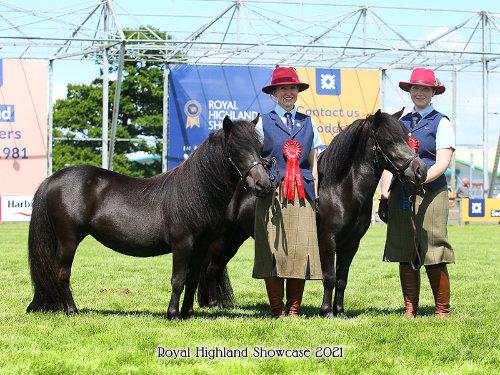 Royal Highland Showcase Shetland 2021