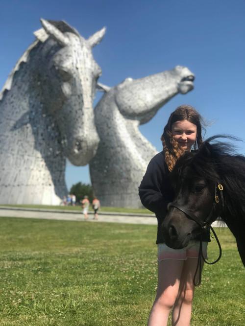 Hools Shetlands Kelpies Falkirk